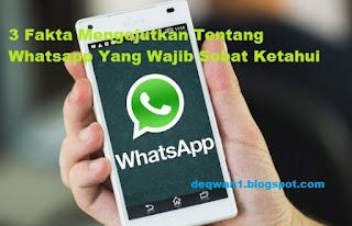 Fakta Mengejutkan Pada Aplikasi Whatsapp Chating