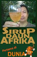 daun Afrika Solusi Cerdas Sehat Alami