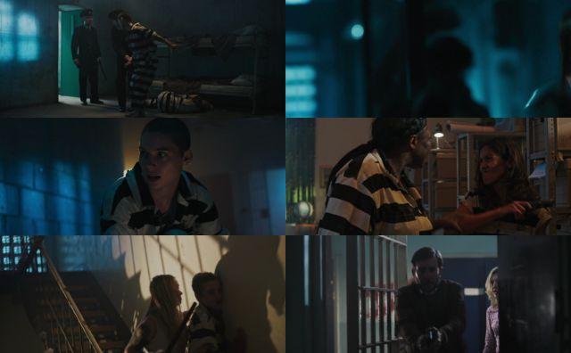 Manicomio del terror (2020) HD 1080p y 720p Latino Dual