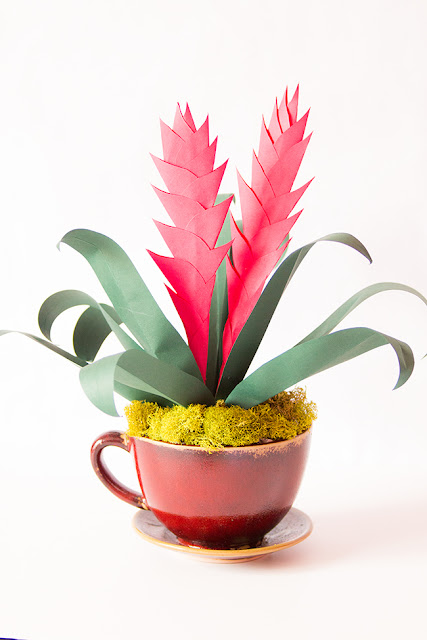paper flowers bromeliads