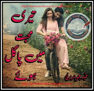 Free download Teri mohabbat mein pagal huy by Tayyba Chaudhary Episode 1 to 10 pdf