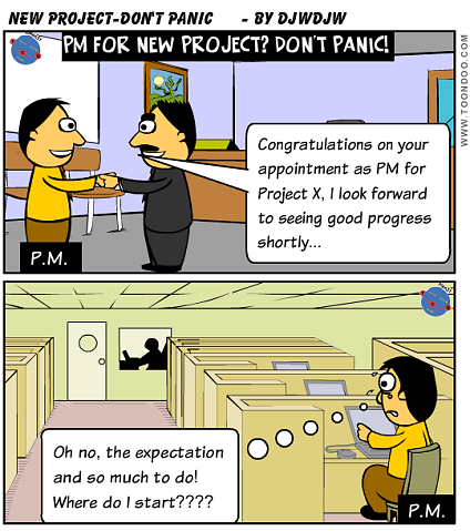 Appointed PM for a new Project? - Don't Panic!