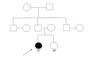 family genogram