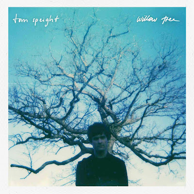 "Tom Speight Unveils New Single ""Willow Tree"""
