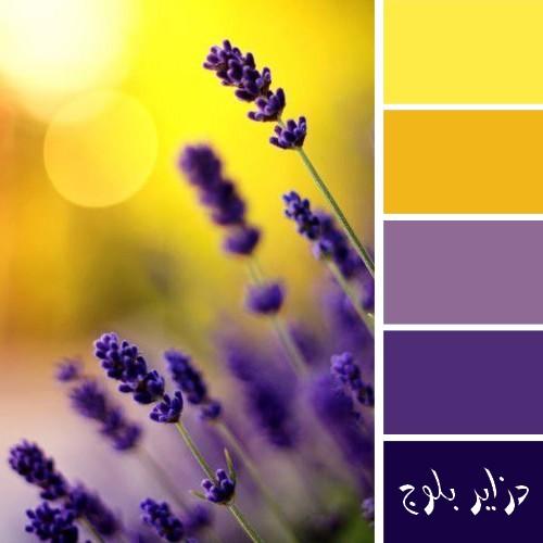 طريقة تنسيق ألوان الاثاث في الديكور المنزلي - صور تناسق ألوان دهانات الجدران والحوائط مع الاثاث في الغرف