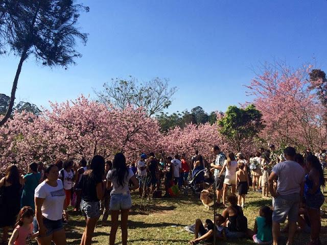 Eventos no mês de abril em San Francisco