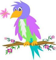 most beautifull bird on earth