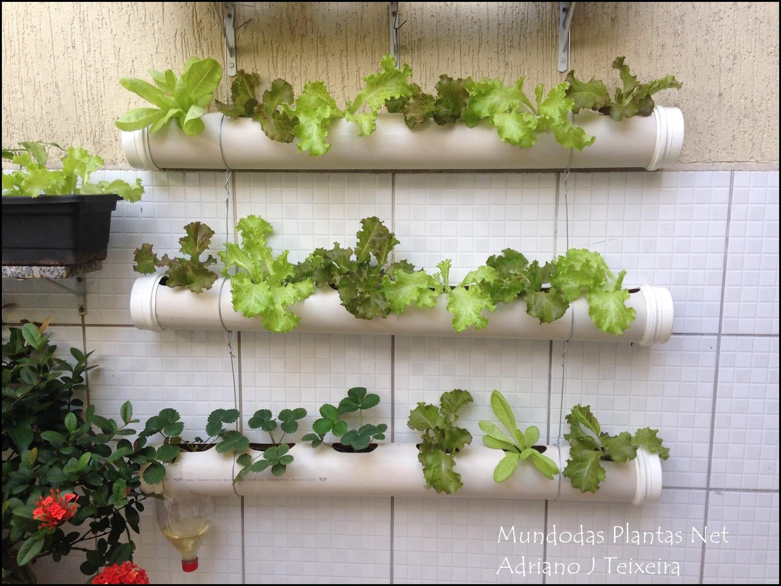uma horta vertical com tubos de pvc em sua casa