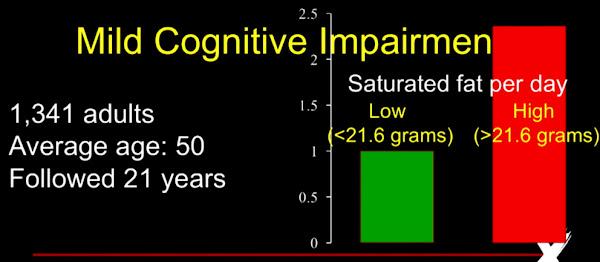 飽和脂肪酸 軽度認知障害