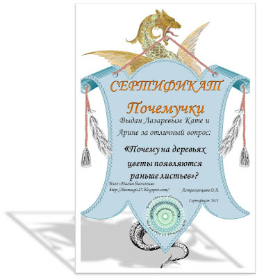 pochemu-na-dereve-cvety-raspuskajutsja-ranshe-listev-magija-biologii