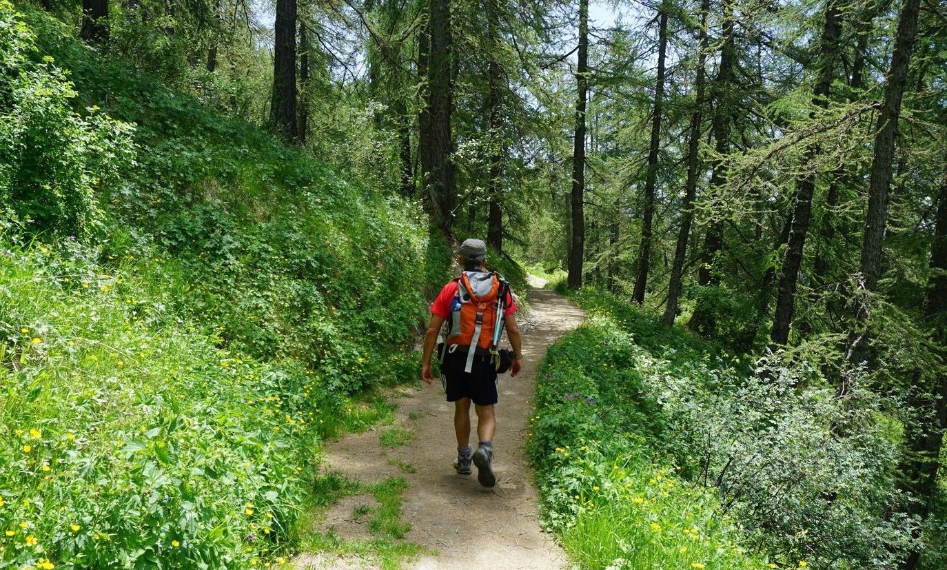 Trail circling Tete du Garnier near Valberg