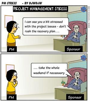 Project Manager Stress