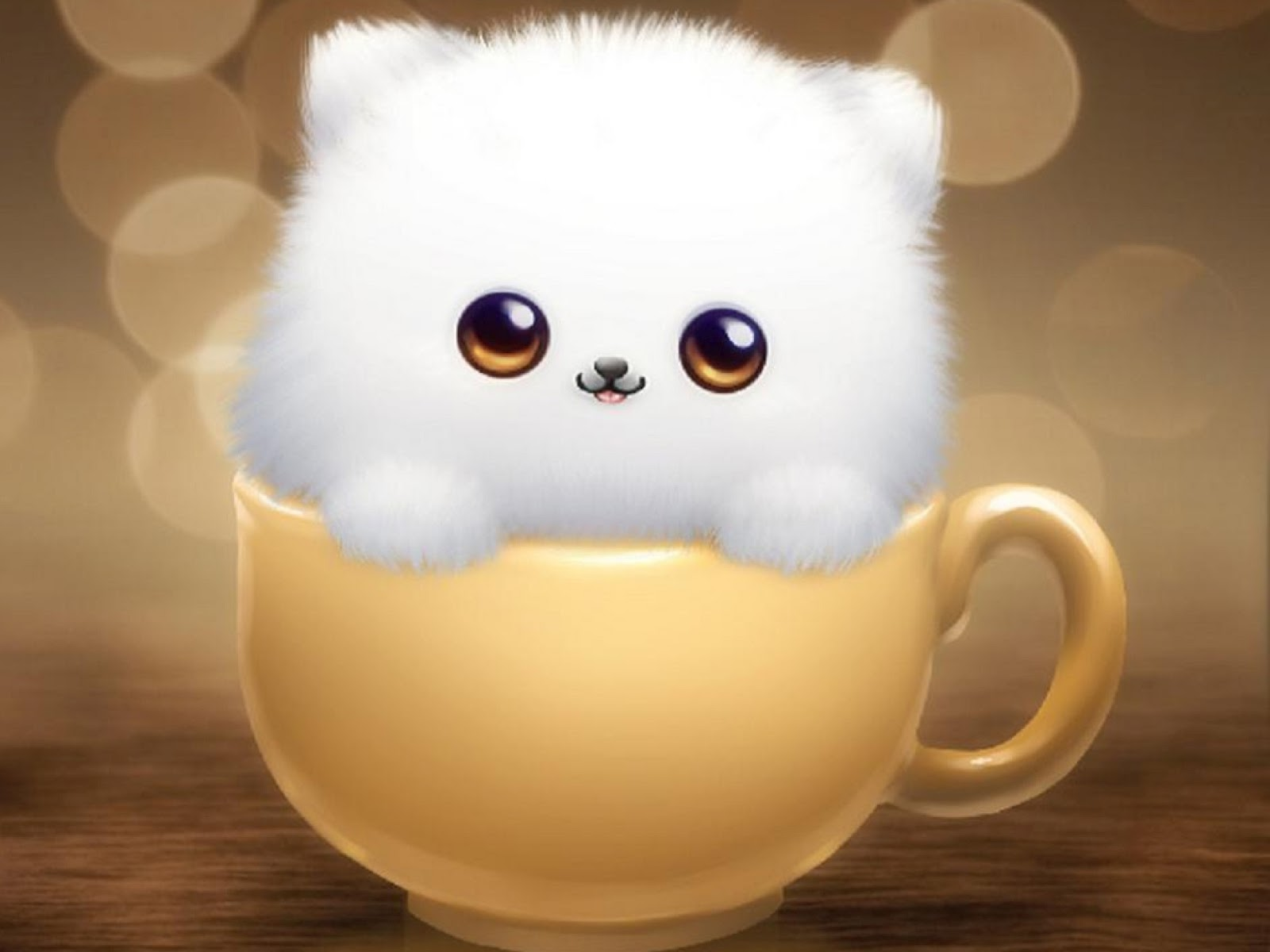 Wallpaper Kucing Imut Lucu Gambar Kartun Lucu Dan Wallpaper Keren