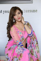 Actress Angela Krislinzki in Pink Saree Blouse Exclusive Pics March 2017 ~  032.JPG