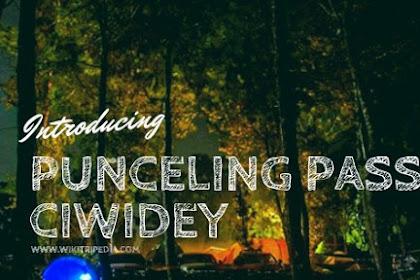 Punceling Pass Ciwidey - REVIEW Fasilitas, Harga Tiket Masuk & Camping 2019
