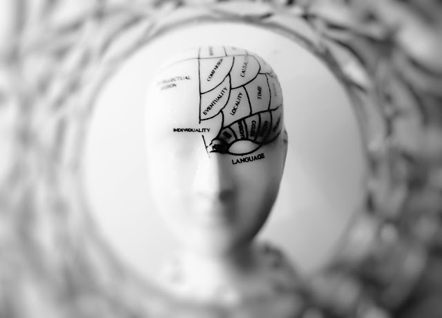 Mind Vs Brain Psychology