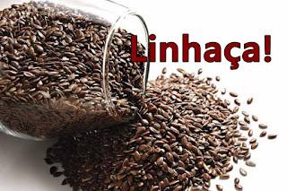 os benefícios da semente de linhaça