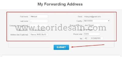 Panduan menggunakan viabox untuk google adsense us