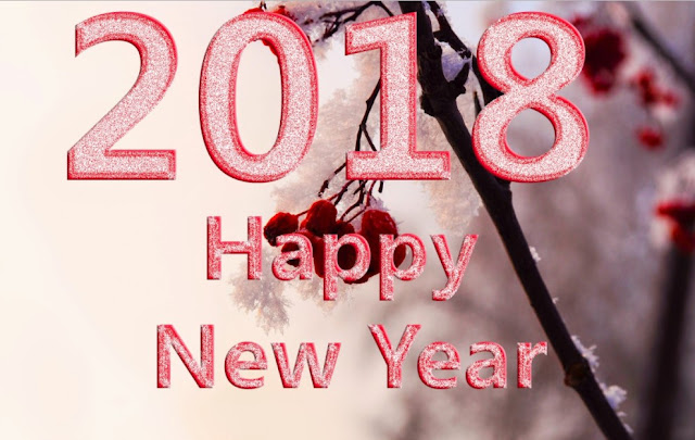famous 2018 new year pic