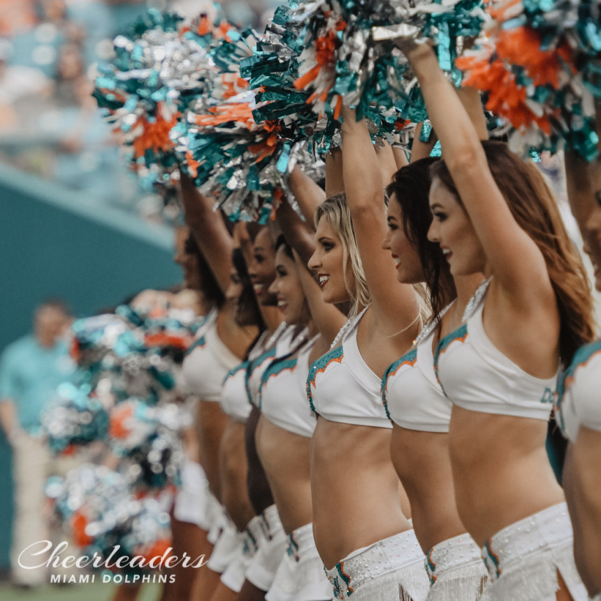 Dolphins cheerleaders nude — 5