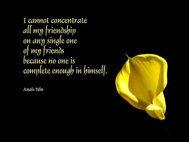 Romantic friendship messages  Best Romantic Friendship Sms