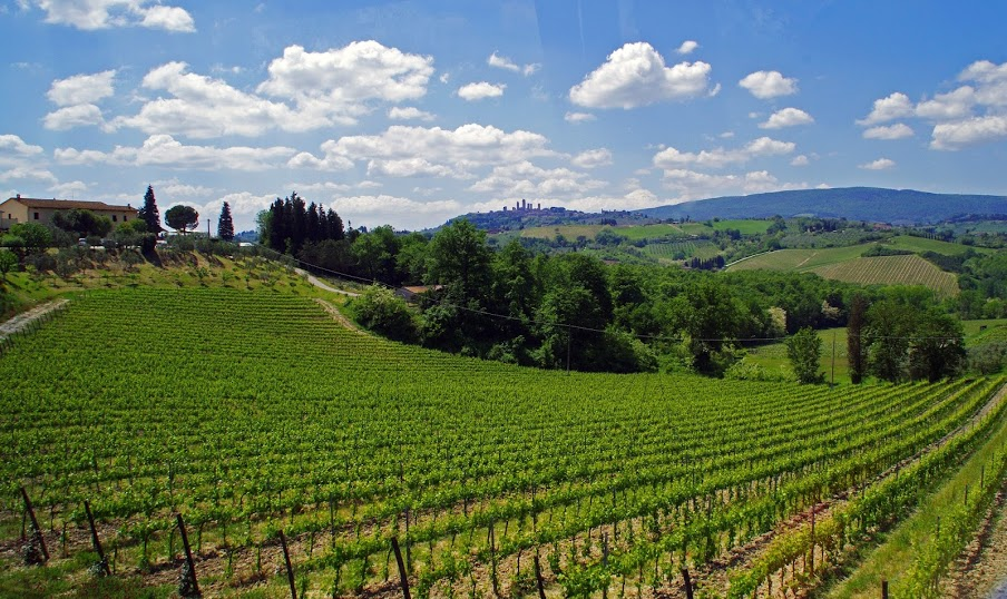 Tuscan wineries Italy