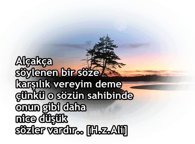 güzel sözler, özlü sözler, anlamlı sözler, Hz. Ali, sahabe, ahlak, güzel ahlak, söz adabı