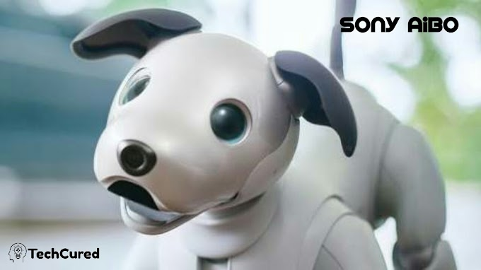 Sony Aibo Review, Price And Release Date