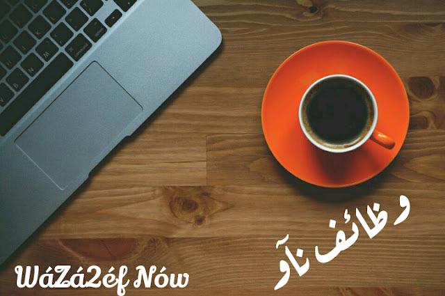 وظائف محاسبين اليوم في مصر والسعودية | وظائف ناو