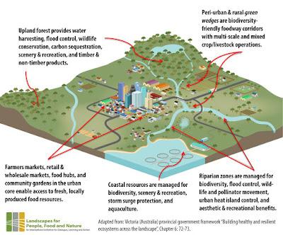 City Region Food Systems concept diagram