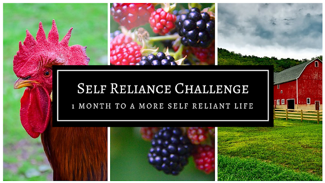 31 days to a more self-reliant life. #selfreliantchallenge week 1
