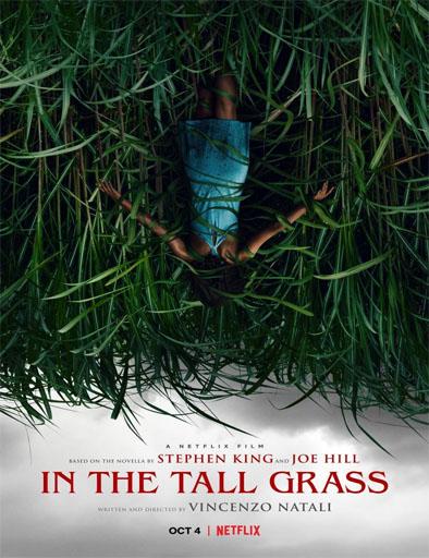 descargar JEn la hierba alta (2019) 1080p [LATINO] [1 LINK] [MEGA] gratis, En la hierba alta (2019) 1080p [LATINO] [1 LINK] [MEGA] online