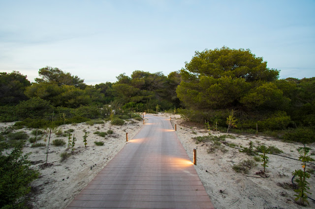 Pineta-Vivosa Apulia resort