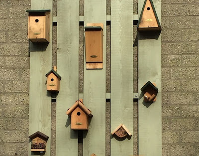 Bird boxes hung on the wall in a display
