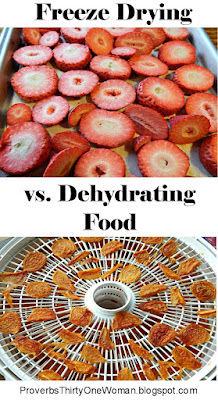 Freeze Dried Food vs. Dehydrated Food - what's the difference?