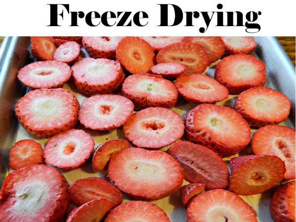 Freeze Dried vs. Dehydrated Food (What's the Difference Between Freeze Drying & Dehydrating?)