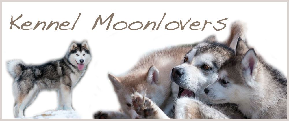 Kennel Moonlover´s