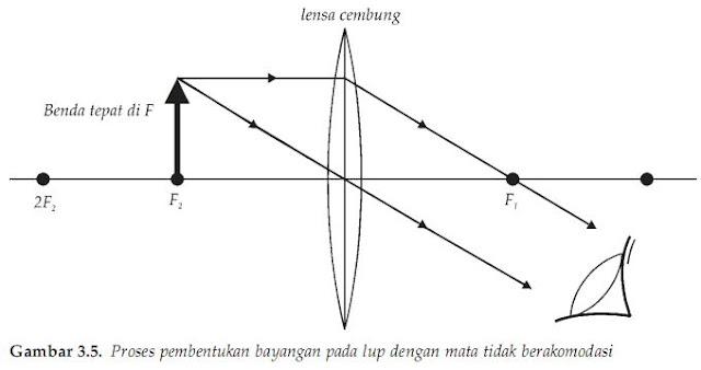 Proses pembentukan bayangan pada lup dengan mata berakomodasi paling kuat