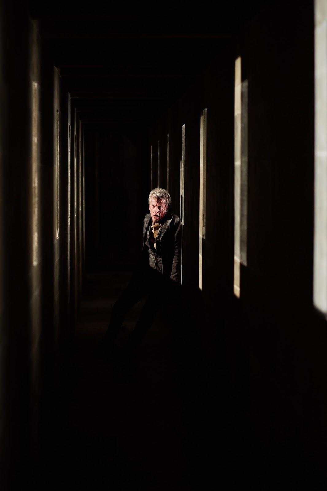 9.11 Heaven Sent - DoctorWho911 0590 - Doctor Who Screencaps | Doctor who,  Doctor who series 9, Heaven sent
