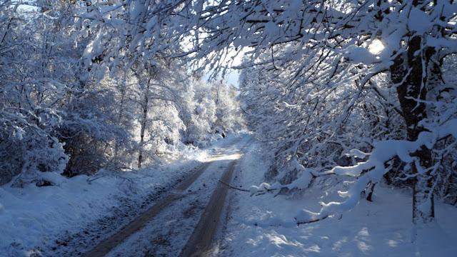 Γιάννης Καλλιάνος: Ετοιμαστείτε για χιονοπόλεμο...
