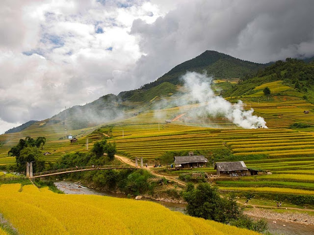 October! Dating Muong Lo Rice Valley 2