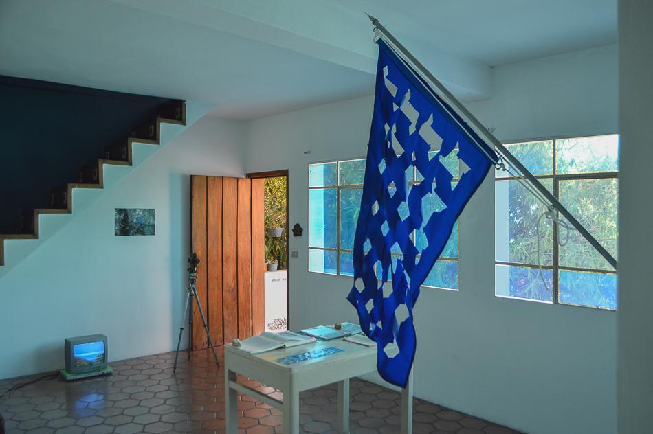 Vista de sala con bandera, vídeo y libros