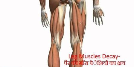 पैर की माँसपेेशियों का क्षरण-Leg Muscle Degradation