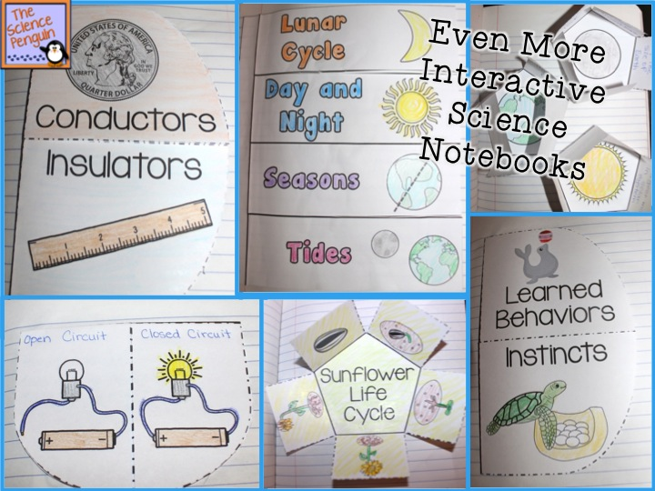 Even more science interactive notebooks the science penguin even more science interactive notebooks pronofoot35fo Gallery