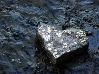 penyebab kerasnya hati manusia