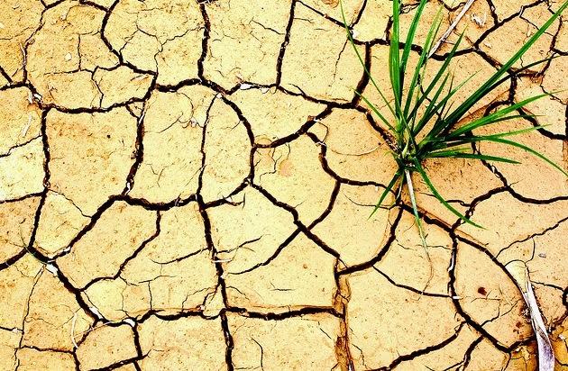 tanah bumi kering tandus