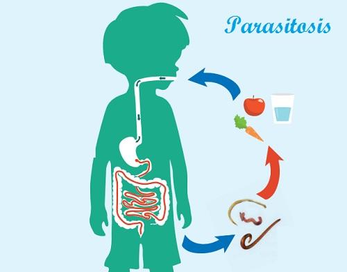 Como evitar el contagio por las lombrices y los parásitos