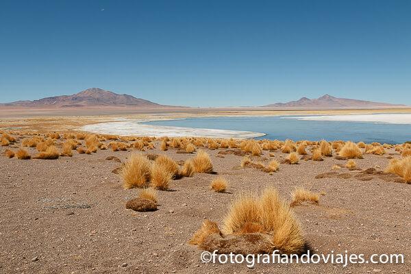 Salar de Tara, desierto de atacama en Chile
