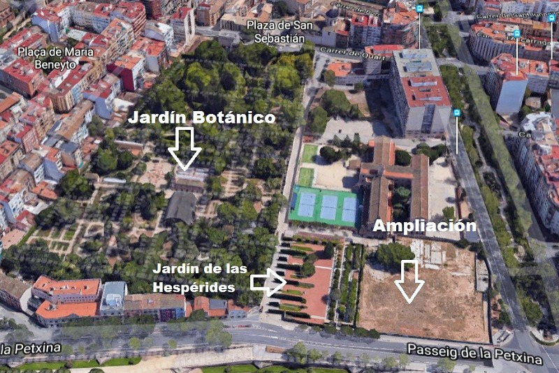Situación Botánico Valencia
