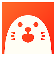 app holla - video chat